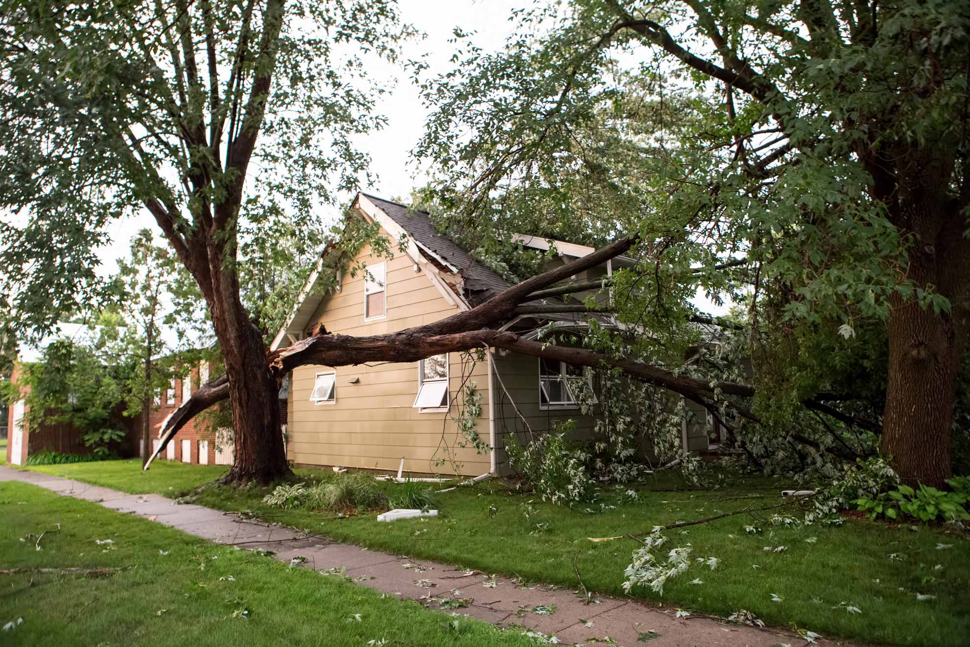 Storm Damage Clean Up in Blue Springs MO & Storm Damage Restoration