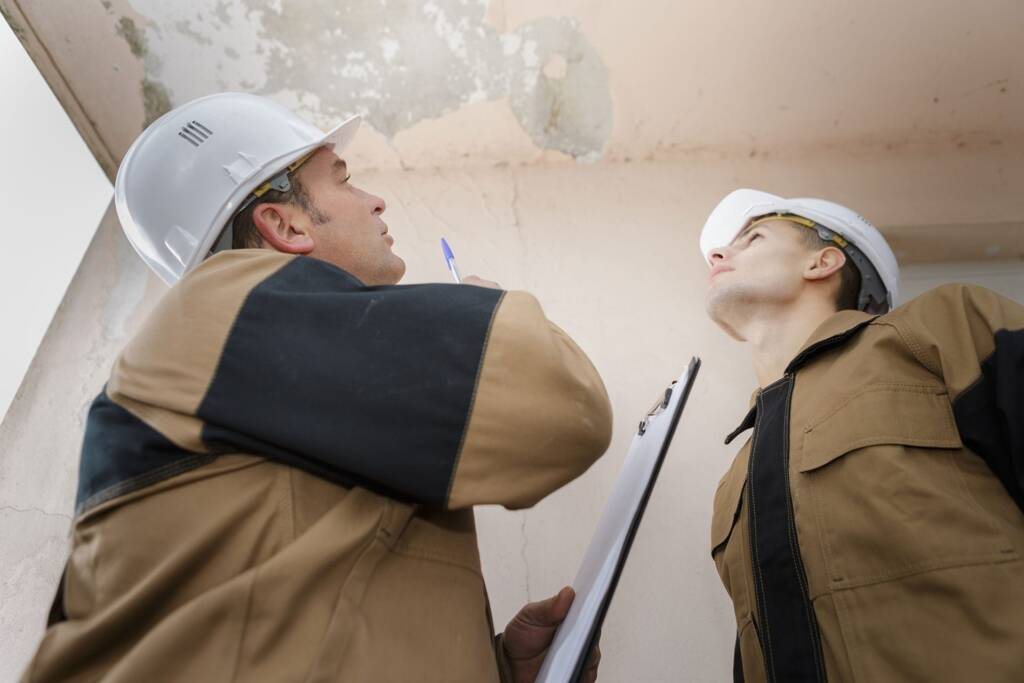 Mold Remediation & Restoration Process 2