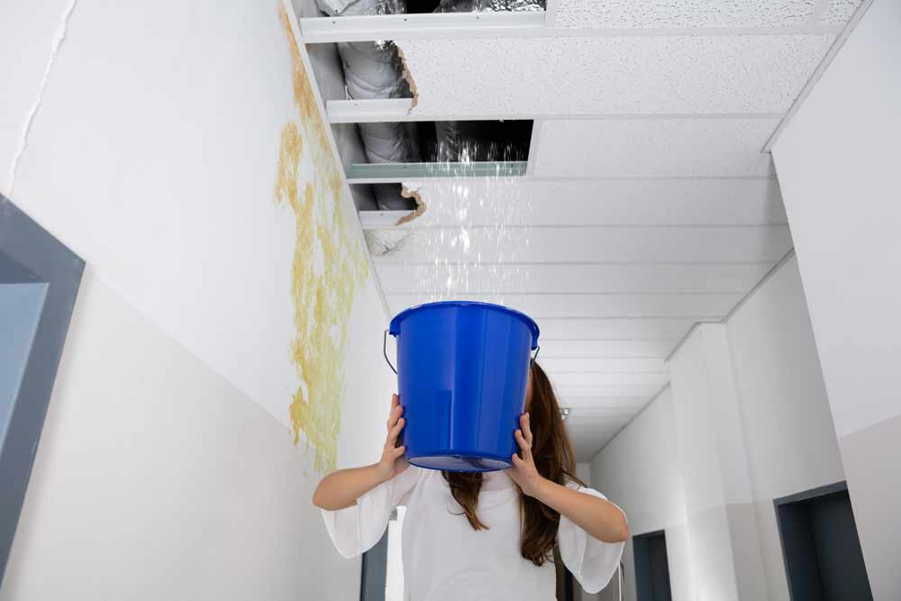 Ceiling Leak Repair in Olathe KS Roof Leak Repair
